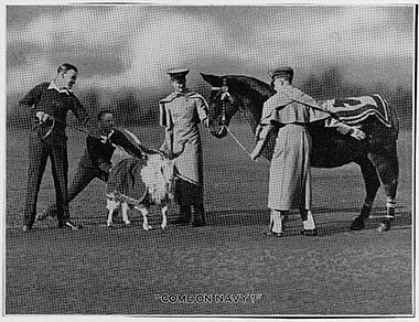 Navy football game, Chicago, Illinois 1926, USNA goat mascot and the Army mule.