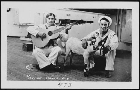 USNA Sailors with Guitar and Goat